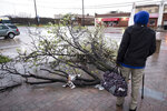 People wait for the bus near a downed tree from overnight storms on Wednesday, March 13, 2019, in Dallas.  A line of severe thunderstorms brought strong winds and the risk of tornadoes to parts of Texas and Arkansas. (Smiley N. Pool/The Dallas Morning News via AP)