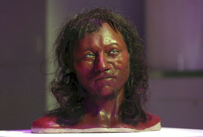 FILE - In this Wednesday Feb. 7, 2018, file photo a full facial reconstruction model of a head based on the skull of Britain's oldest complete skeleton on display during a screening event of The First Brit: Secrets Of The 10,000 Year Old Man at The Natural History Museum, in London.  Scientists say a wave of migrants from a region that is now Greece and Turkey arrived in Britain some 6,000 years ago and virtually replaced the existing hunter-gatherer population, according to a study published Monday April 15, 2019, in the journal Nature.  According to Nature, genetic samples of ancient remains show there was little interbreeding between the newcomers and the darker-skinned foragers that had inhabited the British Isles for millennia. (Jonathan Brady/PA via AP, File)