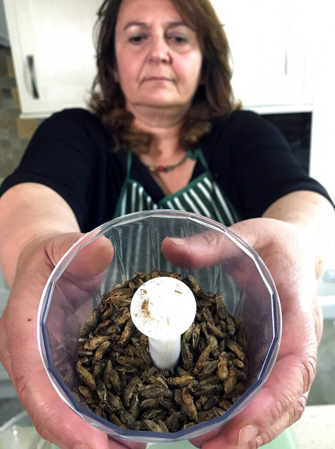 Tiziana di Costanzo, co-founder of Horizon Insects, holds up a cup of dried crickets to be ground up and added to pizza dough, in her London kitchen on June 2, 2021. While insects are commonly eaten in parts of Asia and Africa, they're increasingly seen as a viable food source in the West as Earth's growing population puts more pressure on global food production. Experts say they're rich in protein, yet can be raised much more sustainably than beef or pork. Regulatory change has also made things easier for European companies looking to market insects directly to consumers. (AP Photo/Kelvin Chan)