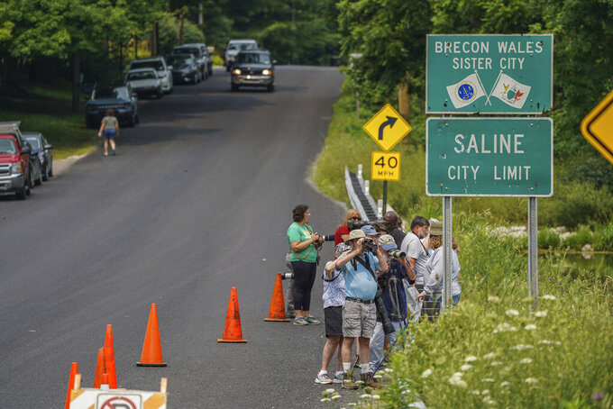 People line the roadway along the Koch Warner Drain on Saline-Milan Road in Saline, Mich., on Monday, July 19, 2021 with their cameras and binoculars while trying to get a look at a roseate spoonbill that has been hanging out in the waterway. The bird typically lives in the Gulf Coast region. (Ryan Garza/Detroit Free Press via AP)