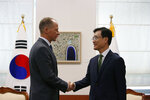 David Stilwell, left, U.S. assistant secretary for East Asian and Pacific Affairs, shakes hands with his South Korean counterpart Cho Sei-young during their meeting at the Foreign Ministry in Seoul, South Korea, Wednesday, Nov. 6, 2019. (Heo Ran/Pool Photo via AP)