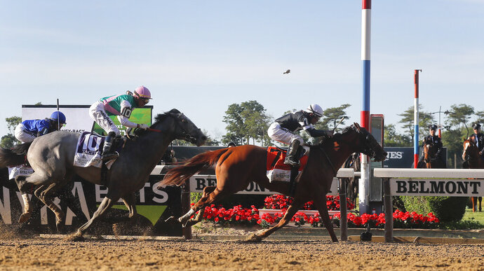 Sir Winston (7), with jockey Joel Rosario up, crosses the finish line ahead of Tacitus (10), with jockey Jose Ortiz up, to win the 151st running of the Belmont Stakes horse race, Saturday, June 8, 2019, in Elmont, N.Y. (AP Photo/Julie Jacobson)