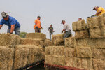 Ranchers from the Klamath River Basin collect hay donated by Timber Unity at the farm of Fred Simon, Saturday, July 24, 2021, in Malin, Ore. Dozens of domestic wells have gone dry in an area near the Oregon-California border where the American West's worsening drought has taken a particularly dramatic toll. (AP Photo/Nathan Howard)