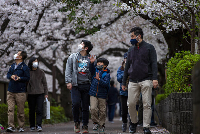"""People wearing protective masks to help curb the spread of the coronavirus walk under a canopy of cherry blossoms Sunday, March 28, 2021, in Tokyo. Japan's favorite flower, called """"sakura,"""" started blooming earlier this month and has already peaked in many places, setting the earliest records in more than a dozen cities across the country.(AP Photo/Kiichiro Sato)"""