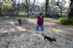 In this Thursday, Oct. 17, 2019, photo, Laura and Chris Smith walk around the 2-acre plot where their home once stood before it was destroyed by last year's Camp Fire in Paradise, Calif. The Smiths are now living in a small apartment in Chico where neighbors complain if you shut your door too hard. (AP Photo/Rich Pedroncelli)