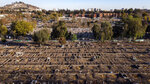 Freshly dug graves are readied at the General Cemetery amid the new coronavirus pandemic, in Santiago, Chile, Friday, May 15, 2020. According to Raschid Saud, director of the General Cemetery, there has been an increase in demand. (AP Photo/Mauro Medel)
