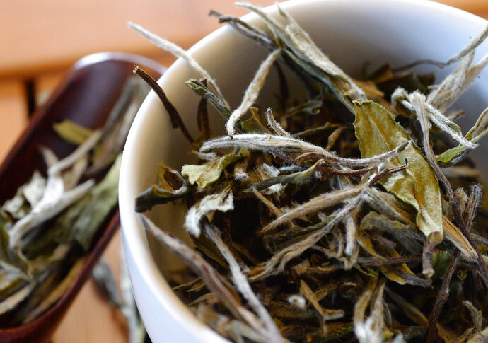 White tea leaves, minimally handled after being plucked from the plant, are displayed at the Fairview Township, Pa., home of tea sommelier Clint Jones on April 2, 2019. Jones wanted was a decent cup of tea, and with internet resources his trek to the tea mountaintop was much simpler than it would have been just 10 years ago. Since then, he's found many, many really good teas: white tea, Japanese green tea, Chinese green tea, oolong, black teas and intensely flavored pu-ehr and filled a dining room buffet in his Fairview Township home with authentic pots and trays and tools for serving each kind in the way of each culture(Greg Wohlford/Erie Times-News via AP)