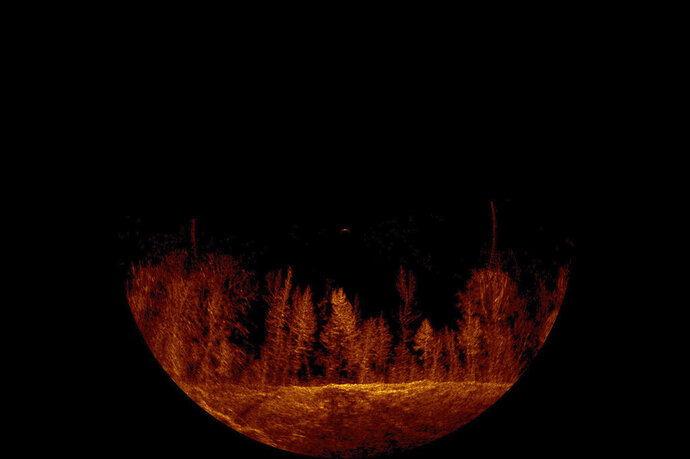This undated sonar image produced by Daphne Search and Rescue and released by the Alabama Law Enforcement Agency shows an underwater forest in Smith Lake, near Cullman, Ala., where searchers are looking for a woman missing since a boating accident on July 4, 2019. Authorities say standing timber and the depth of the water are complicated the recovery effort. (Daphne Search and Rescue via AP)