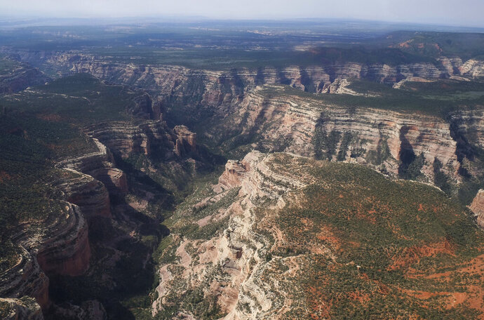 FILE - This May 8, 2017, file photo, shows Arch Canyon within Bears Ears National Monument in Utah. The U.S. government implemented final management plans Thursday for two national monuments in Utah that President Donald Trump downsized. The plans ensure lands previously off-limits to energy development will be open to mining and drilling despite pending lawsuits by conservation, tribal and paleontology groups challenging the constitutionality of the president's action. (Francisco Kjolseth/The Salt Lake Tribune via AP, File)