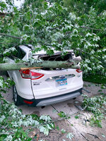In this image provided by Kathy Long VanVoorhis, a large tree rests on top of a car, Thursday, July 9, 2020, in Fergus Falls, Minn., following a severe storm the day before. (Kathy Long VanVoorhis via AP)