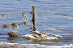 A fence encrusted with ice and corn stalks, stands in flood waters of the Elkhorn River, in Norfolk, Neb., Friday, March 15, 2019. Thousands of people have been urged to evacuate along eastern Nebraska rivers as a massive late-winter storm has pushed streams and rivers out of their banks throughout the Midwest. (AP Photo/Nati Harnik)