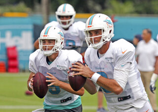 Dolphins Backup QBs Football
