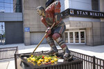 FILE - In this Aug. 12, 2018, file photo, flowers are left to honor former Chicago Blackhawk Stan Mikita on his statue outside United Center in Chicago. A posthumous study of Mikita's brain shows the hockey Hall of Famer suffered from chronic traumatic encephalopathy at the time of his death a year ago. Dr. Ann McKee, the director of the BU CTE Center, announced the findings during the Concussion Legacy Foundation's Chicago Honors Dinner on Friday night, Sept. 13, 2019, at the request of Mikita's family. (James Foster/Chicago Sun-Times via AP, File)