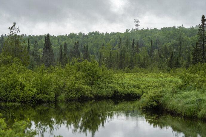 In this June 24, 2019, photo water flows down Moose Creek near Schroeder, Minn. (Evan Frost/Minnesota Public Radio via AP)