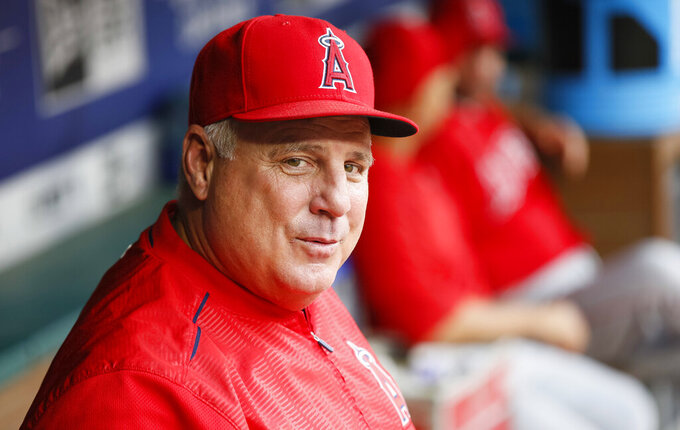 FILE - Los Angeles Angels manager Mike Scioscia smiles in the dugout prior to a baseball game against the Texas Rangers in Arlington, Texas, in this Wednesday, Sept. 5, 2018, file photo. Scioscia is coach of the Team USA baseball team for the Tokyo Games. (AP Photo/Ray Carlin, File)