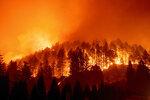 The Glass Fire burns a hillside above Silverado Trail in St. Helena, Calif., on Sunday, Sept. 27, 2020. (AP Photo/Noah Berger)
