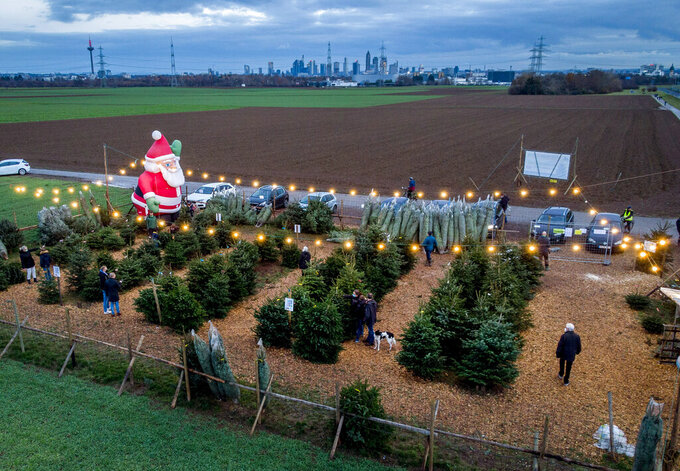 Christmas trees for sale on the outskirts of Frankfurt, Germany, Sunday, Dec. 13, 2020. Chancellor Angela Merkel said she and the governors of Germany's 16 states agreed Sunday to step up the country's lockdown measures from Dec. 16 to Jan. 10 to stop the exponential rise of COVID-19 cases. (AP Photo/Michael Probst)