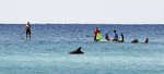 FILE - In this April 5, 2018, file photo, paddleboarders watch a dolphin swim by near Grayton Beach State Park in Florida. Stephen Leatherman, a coastal scientist and professor at Florida International University, has been drafting a list of the best beaches in the U.S. under alias