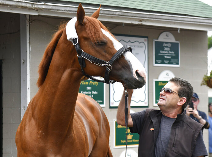 Triple Crown winner Justify, and assistant trainer Jimmy Barnes look at each other following his arrival at Churchill Downs, Monday, June 11, 2018, in Louisville, Ky. (AP Photo/Timothy D. Easley)