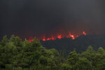Flames rise from a forest fire near Psachna village on the island of Evia, northeast of Athens, Tuesday, Aug. 13, 2019. Dozens of firefighters backed by water-dropping aircraft are battling a wildfire on the island that has left the Greek capital blanketed in smoke. (AP Photo/Yorgos Karahalis)