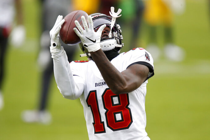 Tampa Bay Buccaneers' Tyler Johnson catches a pass during the warm ups before the NFC championship NFL football game between the Tampa Bay Buccaneers and Green Bay Packers in Green Bay, Wis., Sunday, Jan. 24, 2021. (AP Photo/Matt Ludtke)