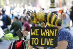Demonstrators sit on the grass, as a sculpture of a bee stands in the foreground, at Parliament Square during an Extinction Rebellion climate change protest in London, Tuesday, Sept 1, 2020. (AP Photo/Kirsty Wigglesworth)