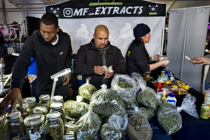 FILE - In this Dec. 29, 2018, file photo, vendors from MF Extracts counting their intake of cash at their booth at Kushstock 6.5 festival in Adelanto Calif. The California Senate on Tuesday May 21, 2019, approved a measure, SB51 by state Sen. Bob Hertzberg, D-Van Nuys, to create special banks to handle money from legal marijuana retailers. The bill now goes to the Assembly for consideration. (AP Photo/Richard Vogel, File)