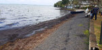 This photo taken and provided by Sunil Dowarkasing, showing oil polluting the foreshore on the eastern side of Mauritius, after it leaked from the MV Wakashio, a bulk carrier ship that recently ran aground off the southeast coast of Mauritius, Sunday, Aug. 9, 2020.  Residents of the Indian Ocean island nation of Mauritius are stuffing fabric sacks with sugar cane leaves to create makeshift oil spill barriers as tons of fuel has leaked from a grounded ship. (Sunil Dowarkasing via AP)