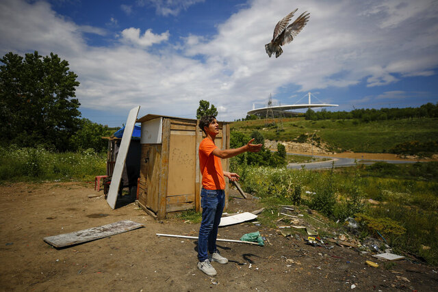 A local resident trains a pigeon at an area, near the Ataturk Olympic Stadium, background, in Istanbul, Saturday, May 30, 2020. The UEFA Champions League final soccer match was scheduled to be hosted at Ataturk Olympic Stadium May 30 but is postponed because of the coronavirus pandemic and a new date for the final has yet to be announced amid the ongoing COVID-19 crisis.(AP Photo/Emrah Gurel)