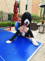 In this Saturday, May 2, 2020 photo provided by his family, Hudson Drutchas, 12, hugs his dog, Ty, outside his Chicago home. Hudson says his pets are helping get him through the pandemic. (Kristin Drutchas via AP)