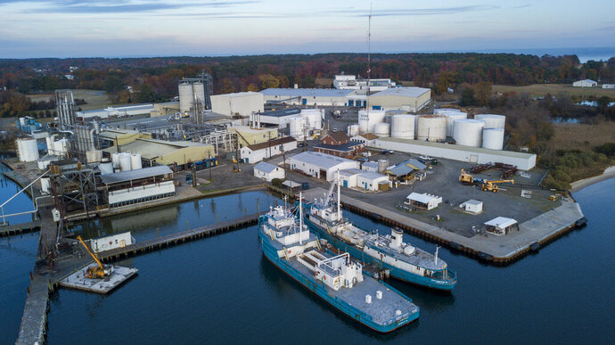 Omega Protein's Menhaden processing plant on Cockrell's Creek in Reedville, Va., Tuesday, Nov. 26, 2019. The last east coast fishery now produces fish oil for health supplements and faces a possible moratorium over concerns about overfishing in the Chesapeake Bay. (AP Photo/Steve Helber)
