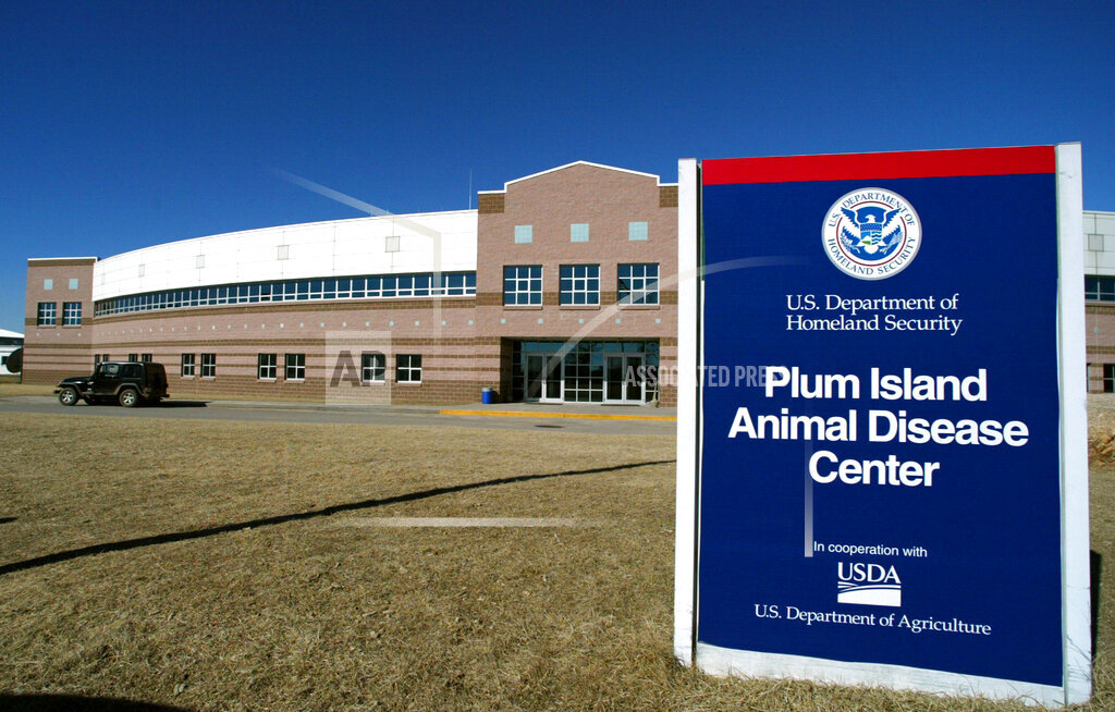 Associated Press Domestic News New York United States PLUM ISLAND