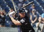 New York Yankees' Aaron Judge hits during batting practice at baseball spring training camp, Monday, Feb. 19, 2018, in Tampa, Fla. (AP Photo/Lynne Sladky)