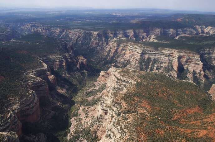 FILE - In this May 8, 2017, file photo, is Arch Canyon within Bears Ears National Monument in Utah. President Joe Biden said Wednesday, Jan. 20, 2021, he plans to review the Trump administration's downsizing of the Grand Staircase-Escalante and Bears Ears National Monuments in southern Utah. Bears Ears National Monument is on lands considered sacred to Native Americans who joined environmental groups in suing when the boundaries were redrawn in 2017. (Francisco Kjolseth/The Salt Lake Tribune via AP, File)