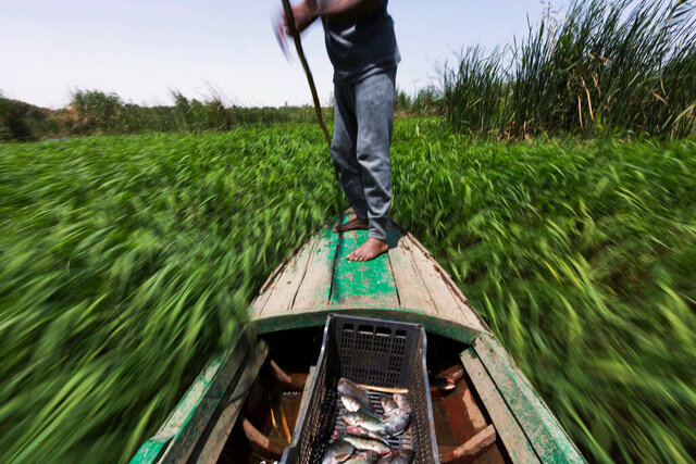 FILE - In this April 12, 2015 file photo, Sayed Ahmed Abdoh poles his boat to check his fish traps in the Nile River, near Abu al-Nasr village, about 770 kilometers (480 miles) south of Cairo, in Egypt. Two days of negotiations between top officials from Ethiopia, Egypt and Sudan were hoped to reach agreements on technical issues related to the $4.6 billion dam Ethiopia is building on the Nile River, but the talks concluded Thursday, Jan. 9, 2020 without an agreement. (AP Photo/Hiro Komae, File)