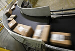 FILE - In this file photo dated Monday, Nov. 26, 2012, packages move along a conveyor belt ready to ship from the Amazon fulfillment center, in Phoenix, U.S.A.  In the past year, the European Union's executive Commission has opened a preliminary investigation into Amazon over concerns the e-commerce giant is using data to get an advantage over smaller third-party merchants on its platform.  (AP Photo/Ross D. Franklin, FILE)