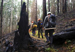 FILE - In this Feb. 1, 2018 file photo, trail crew workers hike the Pacific Crest Trail as it winds through the burn area of the Eagle Creek fire in the Columbia River Gorge near Portland, Ore. (Jamie Hale/The Oregonian via AP, file)