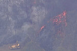 In this image made from video, forest trees are on fire in Kilkivan, Queensland state, Australia, Wednesday, Nov. 13, 2019. Queensland Fire and Emergency Services Acting Commissioner Mike Wassing said about 75 fires were burning across Queensland with weather likely to worsen by Sunday to extreme conditions.(Australia Pool via AP)