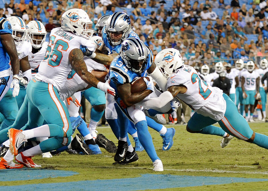 Dolphins Panthers Football