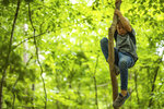 Grayson Macco climbs a tree during the Wauhatchie School forest day camp at Reflection Riding Arboretum and Nature Center on Thursday, July 1, 2021 in Chattanooga, Tenn. (Troy Stolt/Chattanooga Times Free Press via AP)