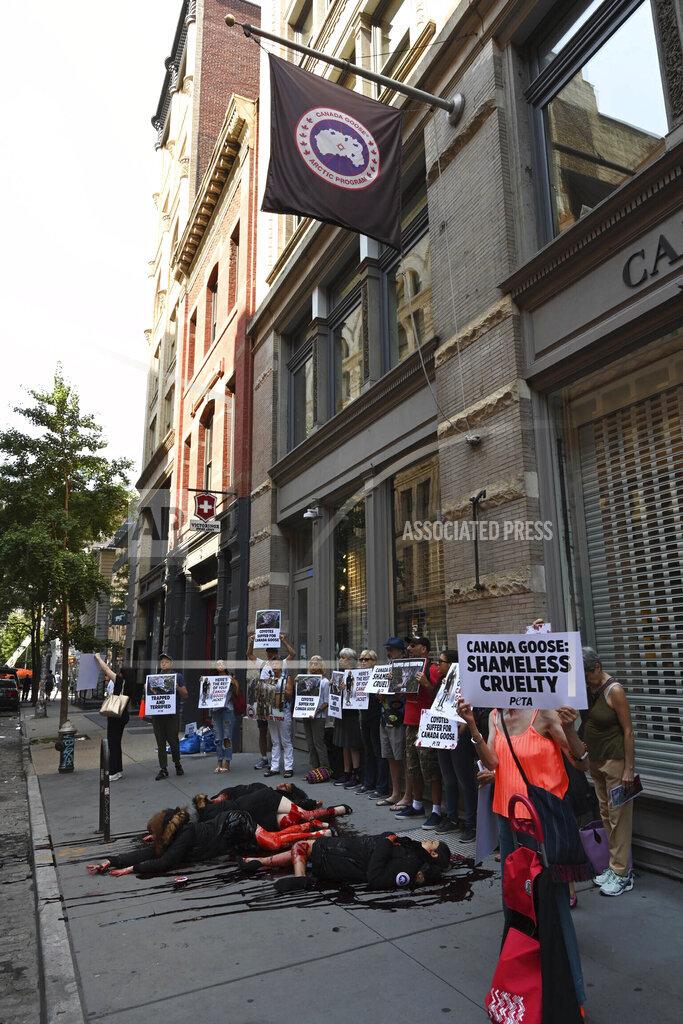 PETA Protestors Swarm Canada Goose Store in NYC