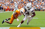 Mississippi State wide receiver Deddrick Thomas (2) scores a touchdown as he's defended by Tennessee's Nigel Warrior (18) in the second half of an NCAA college football game Saturday, Oct. 12, 2019, in Knoxville, Tenn. (AP Photo/Wade Payne)
