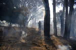 A fireman extinguishes a fire on the slopes of Table Mountain in Cape Town South Africa, Sunday, April 18, 2021. A wildfire raging on the slopes of the mountain forced the evacuation of students from the University of Cape Town. (AP Photo)