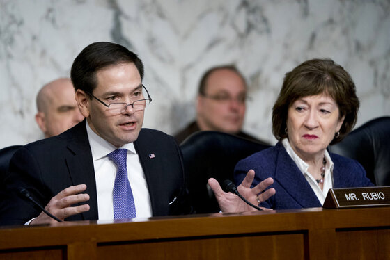 Marco Rubio, Susan Collins