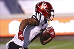 Louisville wide receiver Jordan Watkins (80) runs the ball during an NCAA college football game against Virginia Saturday, Nov. 14, 2020, in Charlottesville, Va. (Erin Edgerton/The Daily Progress via AP)