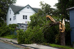 A tree is seen downed after Hurricane Larry crossed over Newfoundland's Avalon Peninsula in the early morning hours, in St. John's, Saturday, Sept. 11, 2021. (Paul Daly/The Canadian Press via AP)