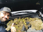 This Monday, Oct. 7, 2019, selfie provided by Chris Persic shows Persic posing next to walnuts and grass under the hood of his family's SUV, in the Pittsburgh area. It turns out squirrels stored more than 200 walnuts under the hood of the car. Persic's wife, Holly, discovered the walnuts and grass when she popped the hood after going to start the car and the vehicle smelled like it was burning. (Chris Persic via AP)