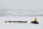 In this Monday, March 11, 2019 photo, musher Linwood Fiedler leaves Unalakleet, Alaska, during a snowfall in the Iditarod Trail Sled Dog Race on March 11, 2019 (Marc Lester/Anchorage Daily News via AP)