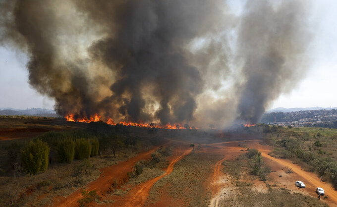 Fire consumes part of the Juquery Park in Franco da Rocha, greater Sao Paulo area, Brazil, Monday, Aug. 23, 2021. According with the Fire Department an illegal paper hot air balloon landed in the area on Sunday, igniting and destroying more than half of the park. (AP Photo/Andre Penner)