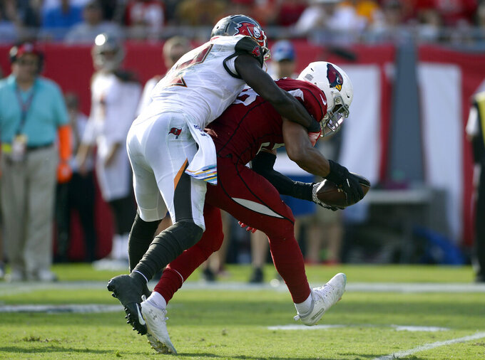 Arizona Cardinals middle linebacker Jordan Hicks (58) intercepts a pass intedended for Tampa Bay Buccaneers wide receiver Chris Godwin (12) during the second half of an NFL football game Sunday, Nov. 10, 2019, in Tampa, Fla. (AP Photo/Jason Behnken)